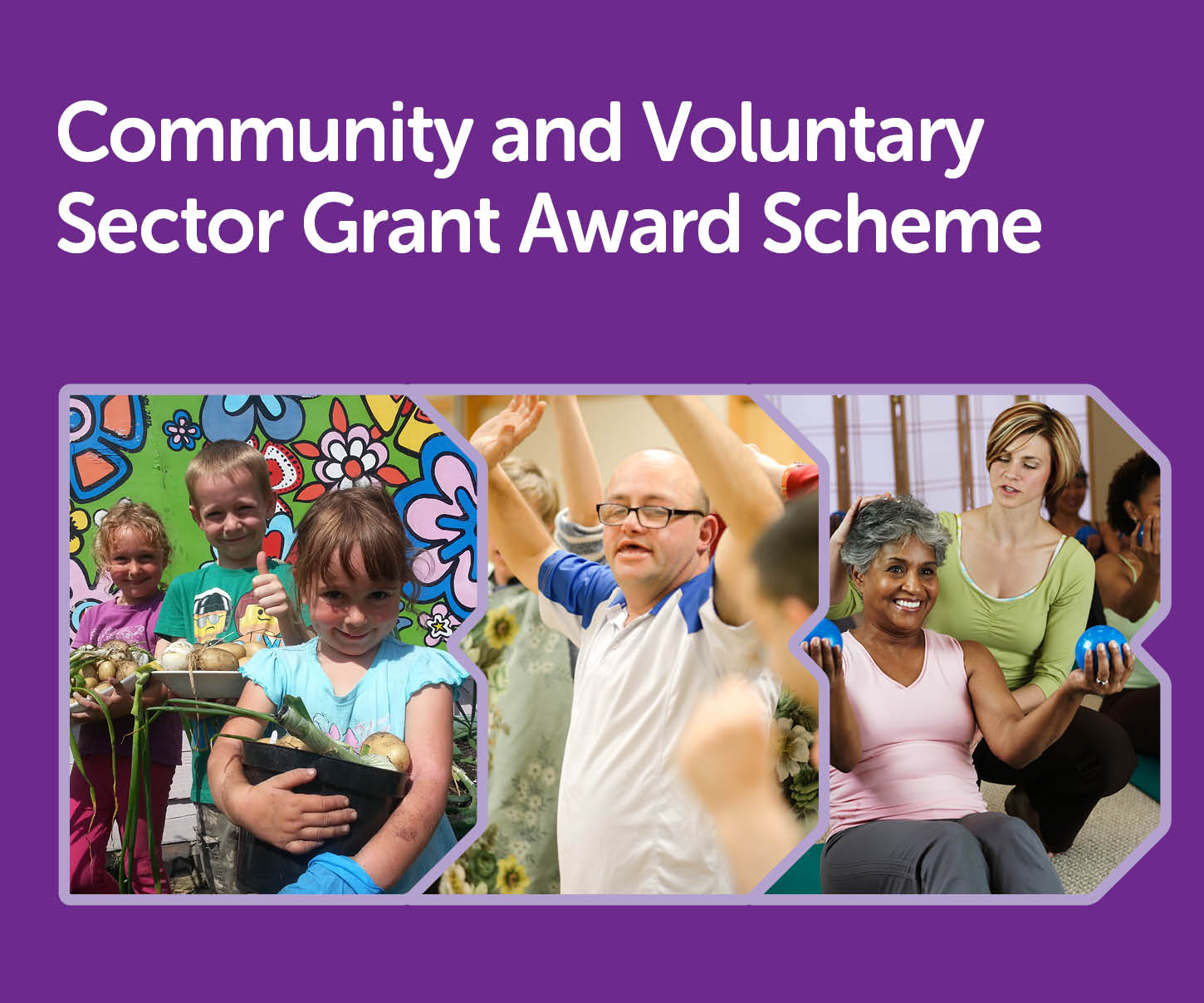 23349 Community and voluntary sector grants_BDBC homepage