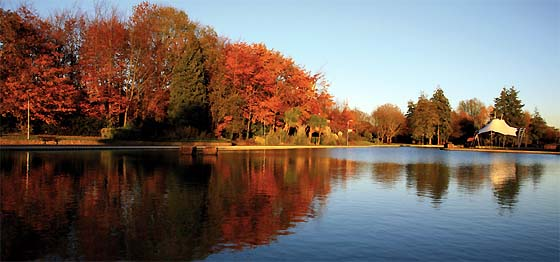 Eastrop Park in the Autumn image